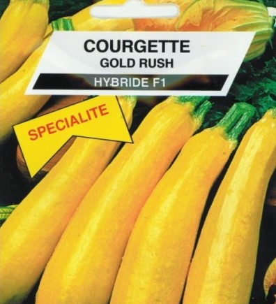 photo de courgette Goldrush F1